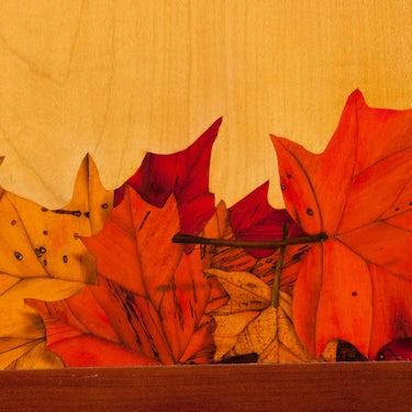 Autumn Cupboard Detail1